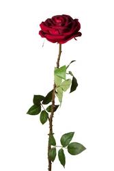 Красивые и вечные искусственные розы,  а также другие цветы